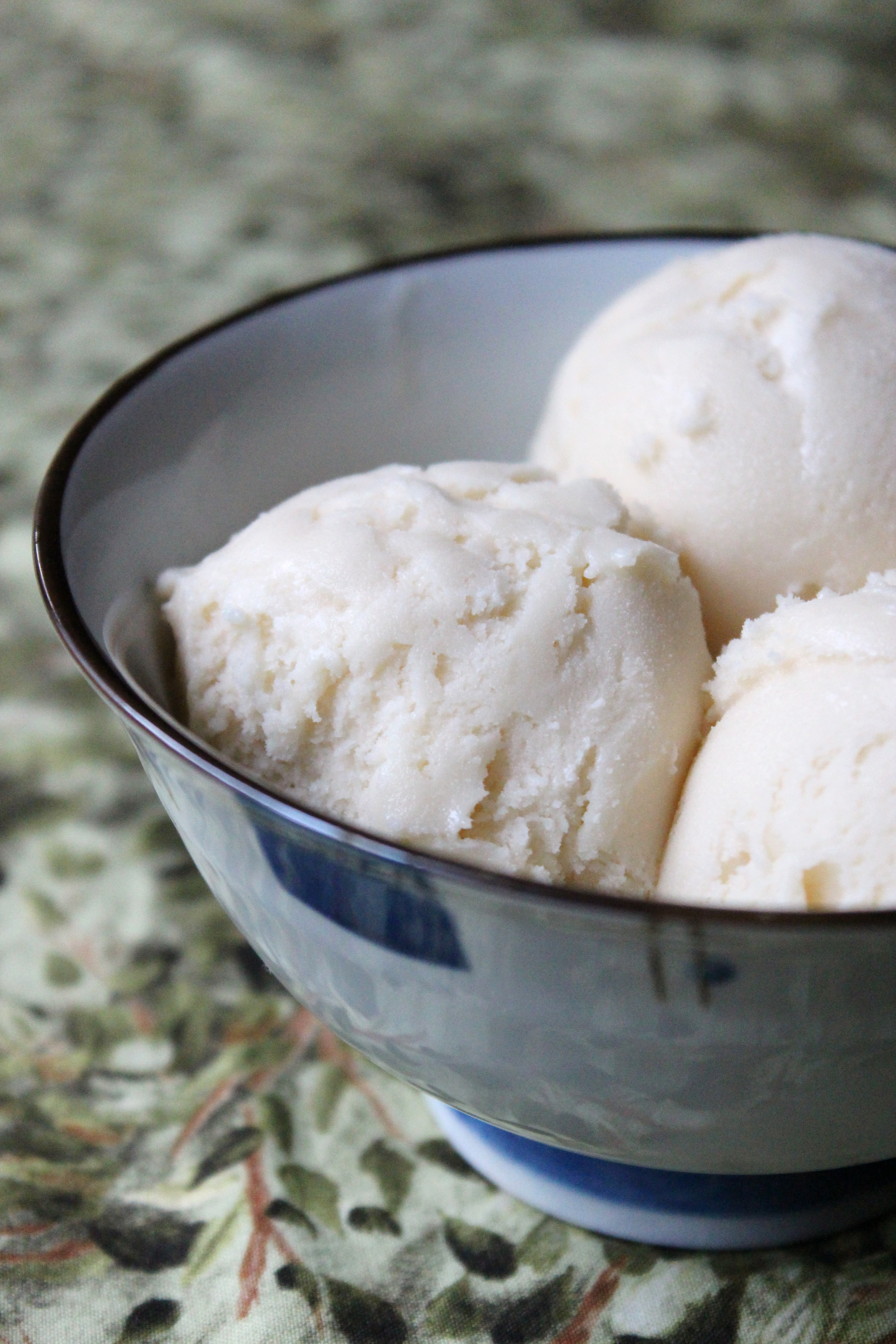Honey Vanilla Greek Frozen Yogurt | Baking Bytes