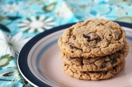 Oatmeal Chocolate Chunk Cookies {{Baking Bytes}}